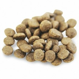 Fish4Dogs Superior Salmon Complete Adult Small 1,5kg